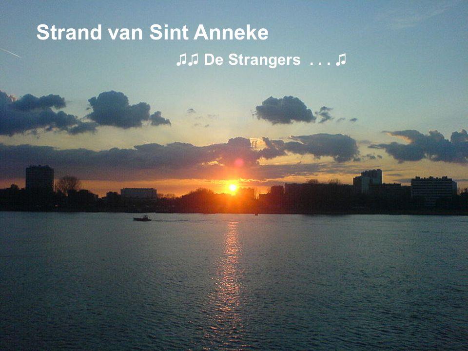 Strand van Sint Anneke ♫♫ De Strangers... ♫