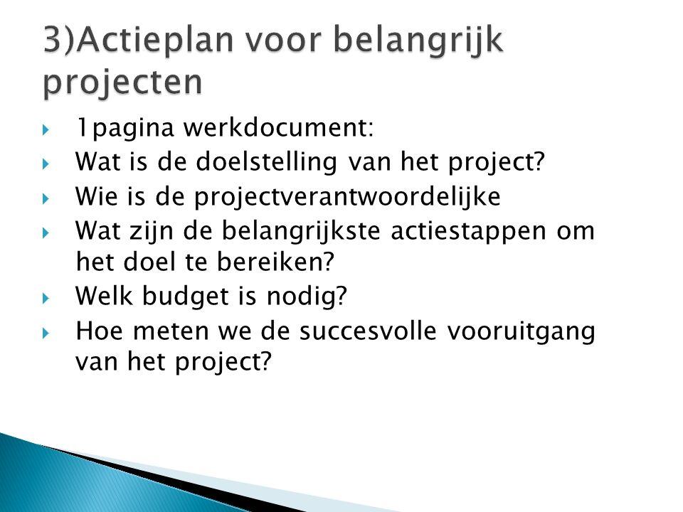  1pagina werkdocument:  Wat is de doelstelling van het project?  Wie is de projectverantwoordelijke  Wat zijn de belangrijkste actiestappen om het