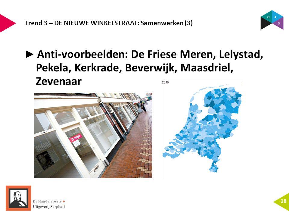 Trend 3 – DE NIEUWE WINKELSTRAAT: Samenwerken (3) 18 ► Anti-voorbeelden: De Friese Meren, Lelystad, Pekela, Kerkrade, Beverwijk, Maasdriel, Zevenaar
