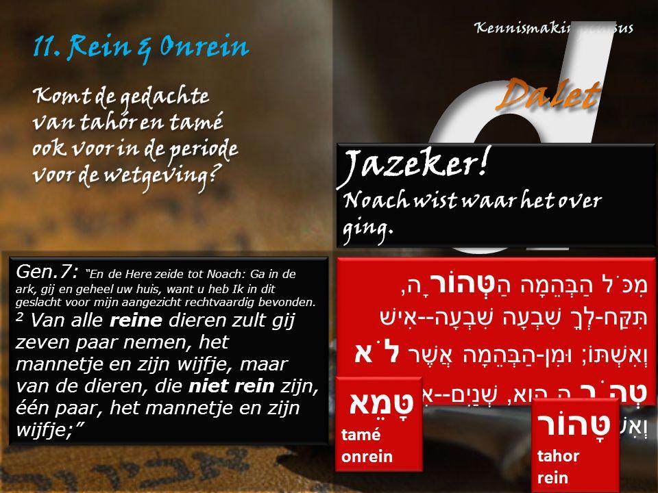 """11. Rein & Onrein Gen.7: """"En de Here zeide tot Noach: Ga in de ark, gij en geheel uw huis, want u heb Ik in dit geslacht voor mijn aangezicht rechtvaa"""