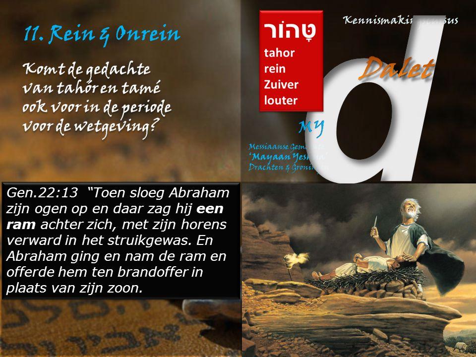 """11. Rein & Onrein Gen.22:13 """"Toen sloeg Abraham zijn ogen op en daar zag hij een ram achter zich, met zijn horens verward in het struikgewas. En Abrah"""