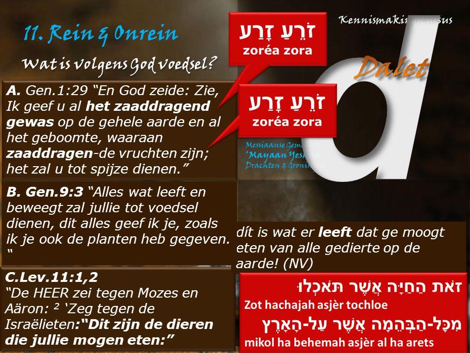 11. Rein & Onrein Wat is volgens God voedsel.