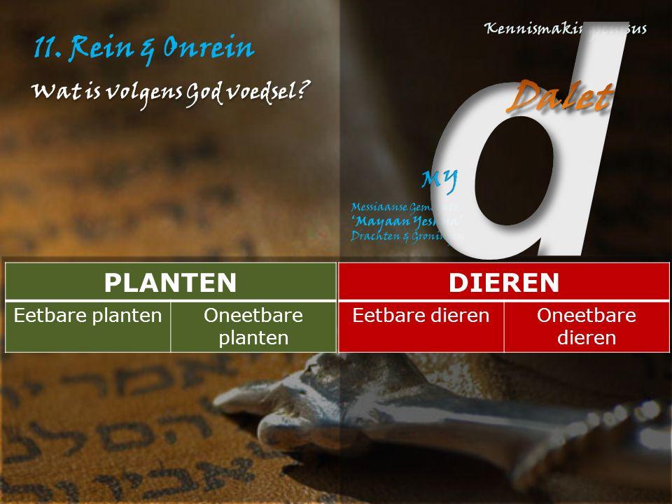 11. Rein & Onrein PLANTEN Eetbare plantenOneetbare planten DIEREN Eetbare dierenOneetbare dieren Wat is volgens God voedsel?