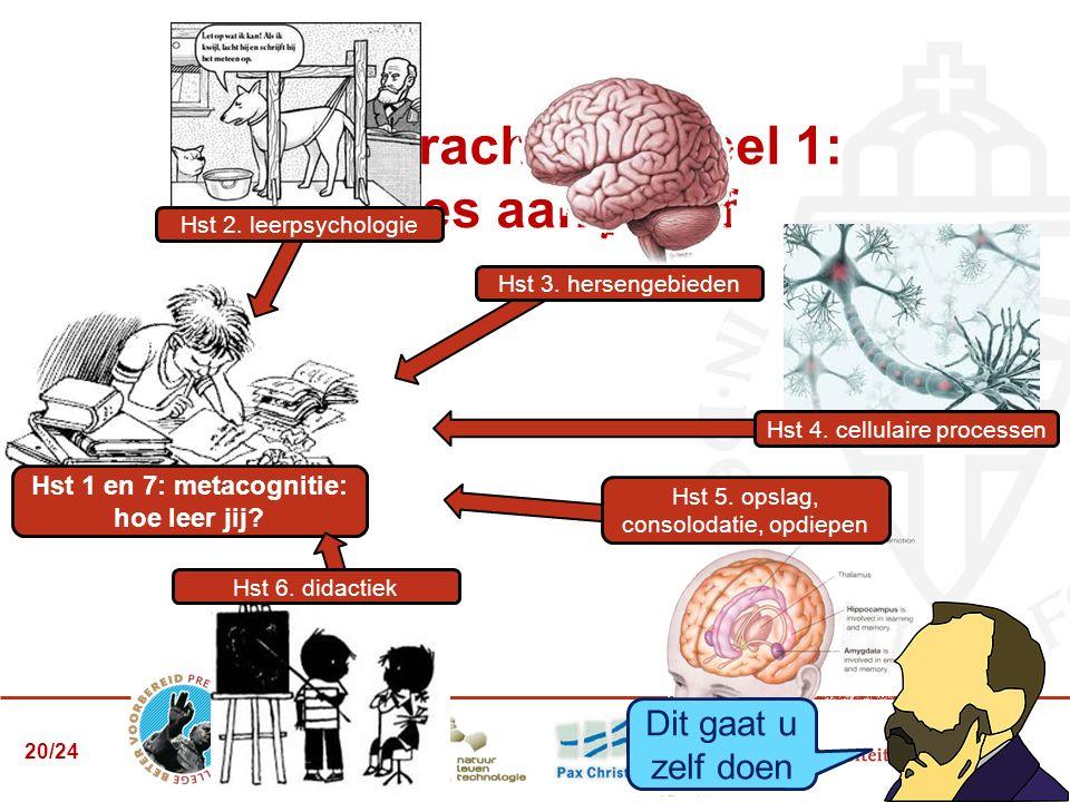 Eindopdracht: 7.3 deel 1: advies aan jezelf Hst 1 en 7: metacognitie: hoe leer jij? Hst 2. leerpsychologie Hst 4. cellulaire processen Hst 3. hersenge