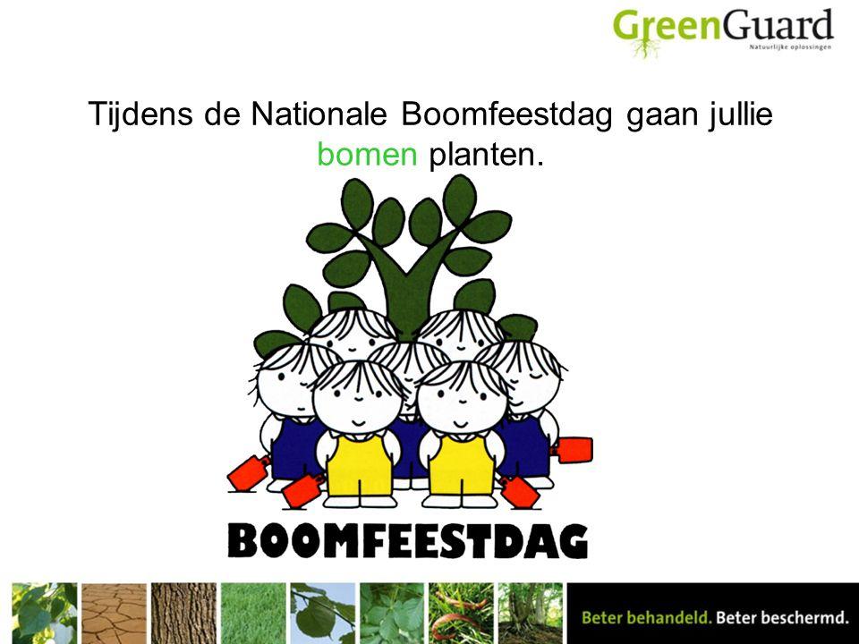 Tijdens de Nationale Boomfeestdag gaan jullie bomen planten.