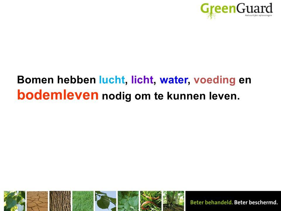 Bomen hebben lucht, licht, water, voeding en bodemleven nodig om te kunnen leven.