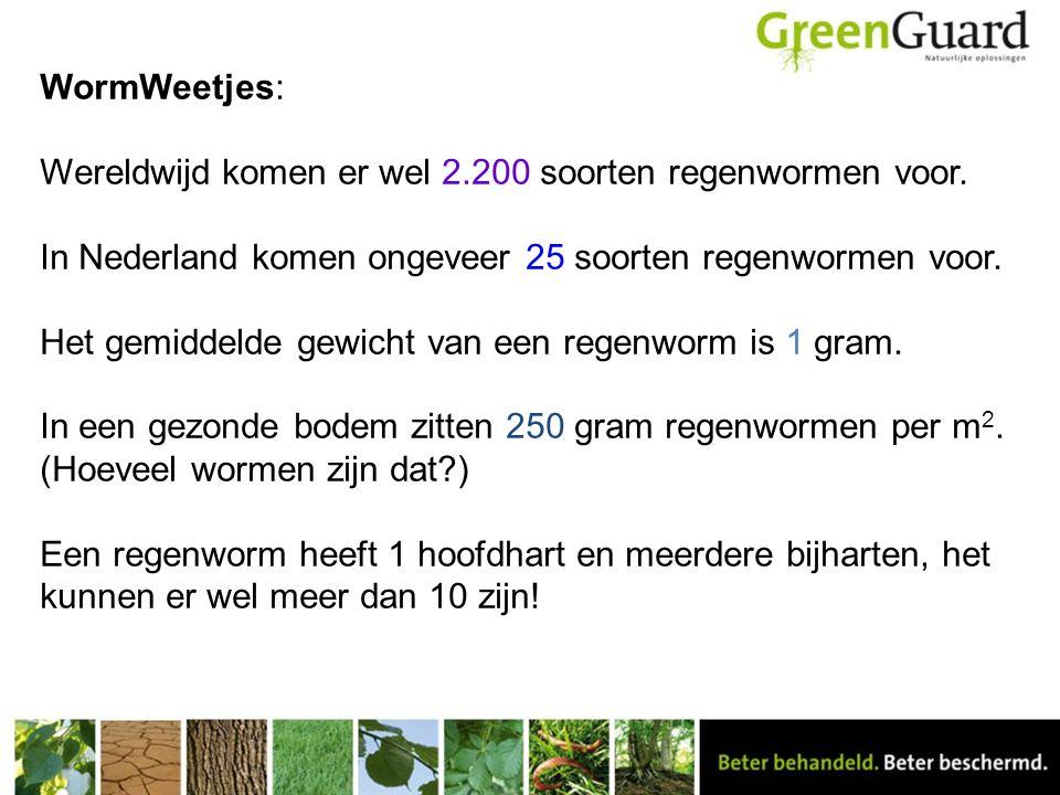 WormWeetjes: Wereldwijd komen er wel 2.200 soorten regenwormen voor. In Nederland komen ongeveer 25 soorten regenwormen voor. Het gemiddelde gewicht v
