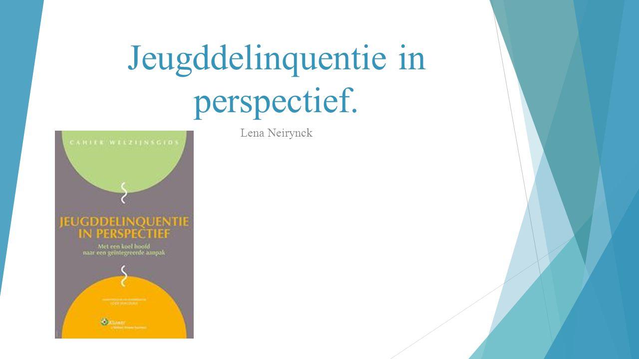 Jeugddelinquentie in perspectief. Lena Neirynck