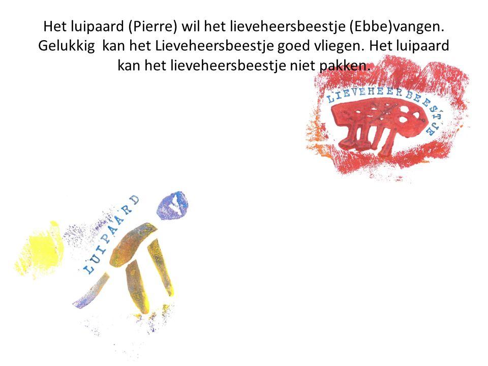 Het luipaard (Pierre) wil het lieveheersbeestje (Ebbe)vangen.