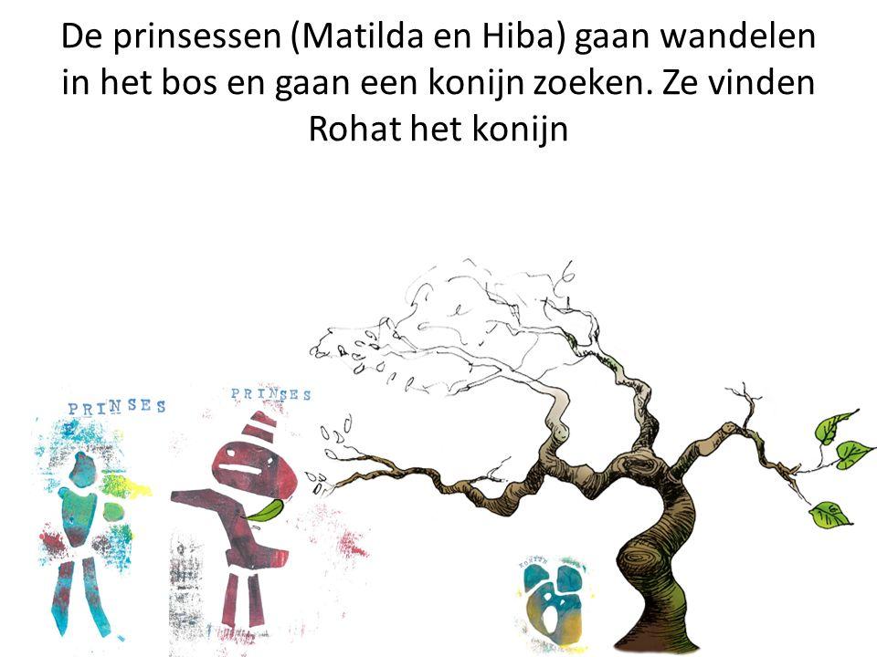De prinsessen (Matilda en Hiba) gaan wandelen in het bos en gaan een konijn zoeken.