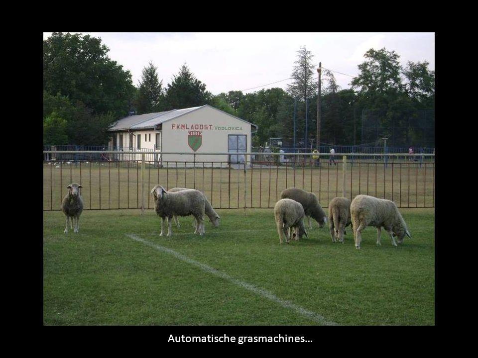 Als er gespeeld wordt, doen ze de poort gewoon open…