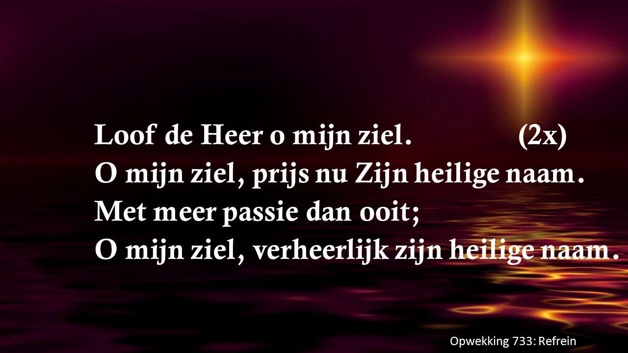 Loof de Heer o mijn ziel.(2x) O mijn ziel, prijs nu Zijn heilige naam. Met meer passie dan ooit; O mijn ziel, verheerlijk zijn heilige naam. Opwekking