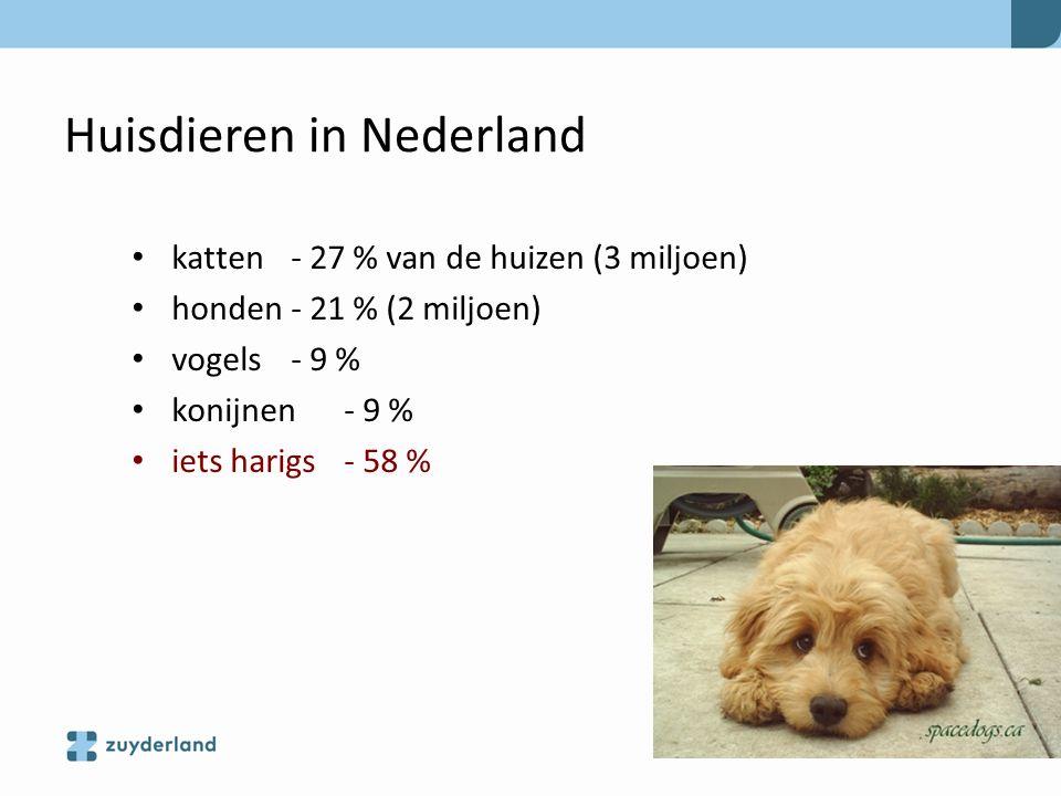 Huisdieren in Nederland katten - 27 % van de huizen (3 miljoen) honden - 21 % (2 miljoen) vogels - 9 % konijnen - 9 % iets harigs - 58 %