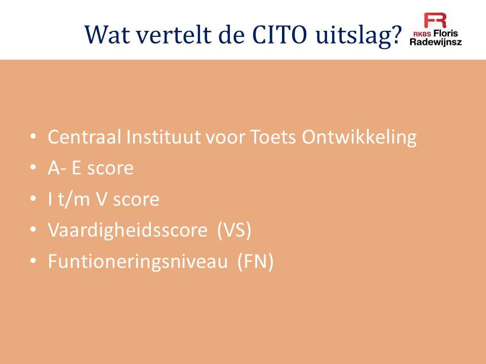 Wat vertelt de CITO uitslag? Centraal Instituut voor Toets Ontwikkeling A- E score I t/m V score Vaardigheidsscore (VS) Funtioneringsniveau (FN)