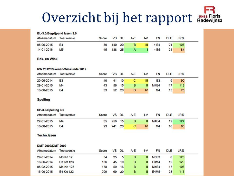 Overzicht bij het rapport