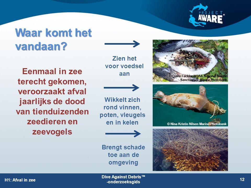 Dive Against Debris™ -onderzoeksgids H1: Afval in zee Waar komt het vandaan? 12 Zien het voor voedsel aan Eenmaal in zee terecht gekomen, veroorzaakt