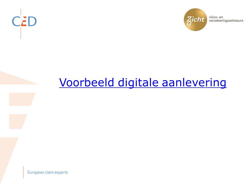 Voorbeeld digitale aanlevering