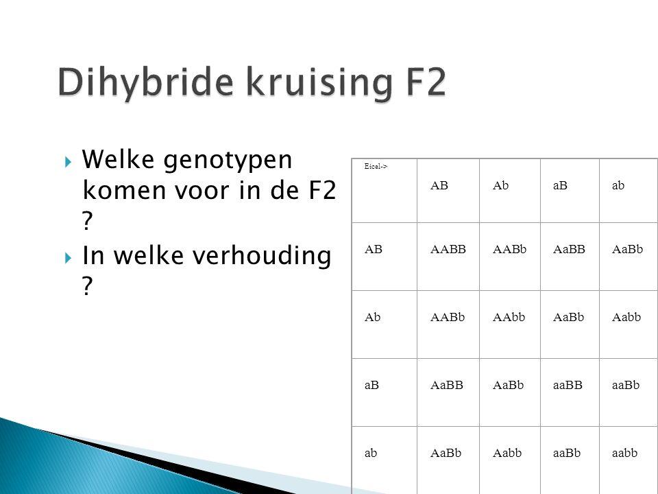  Welke genotypen komen voor in de F2 . In welke verhouding .