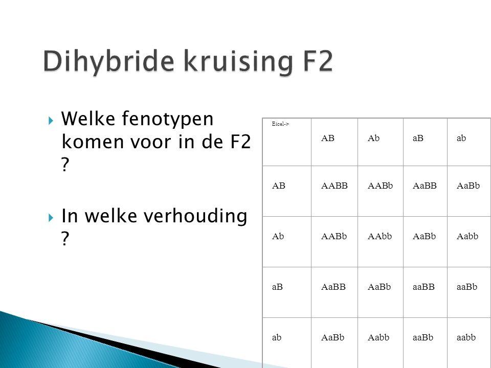  Welke fenotypen komen voor in de F2 . In welke verhouding .