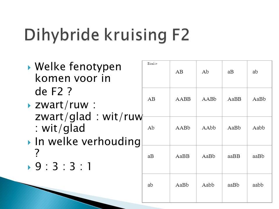  Welke fenotypen komen voor in de F2 .