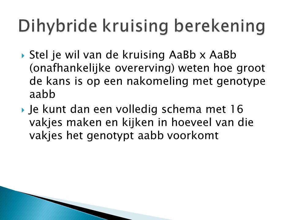 Stel je wil van de kruising AaBb x AaBb (onafhankelijke overerving) weten hoe groot de kans is op een nakomeling met genotype aabb  Je kunt dan een volledig schema met 16 vakjes maken en kijken in hoeveel van die vakjes het genotypt aabb voorkomt
