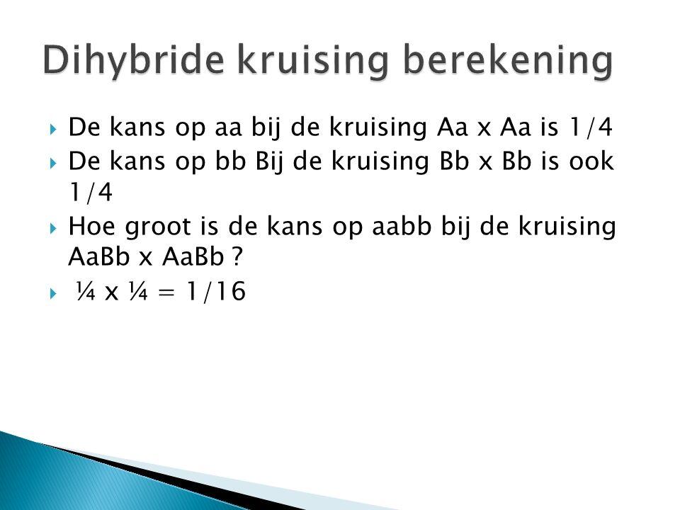  De kans op aa bij de kruising Aa x Aa is 1/4  De kans op bb Bij de kruising Bb x Bb is ook 1/4  Hoe groot is de kans op aabb bij de kruising AaBb x AaBb .
