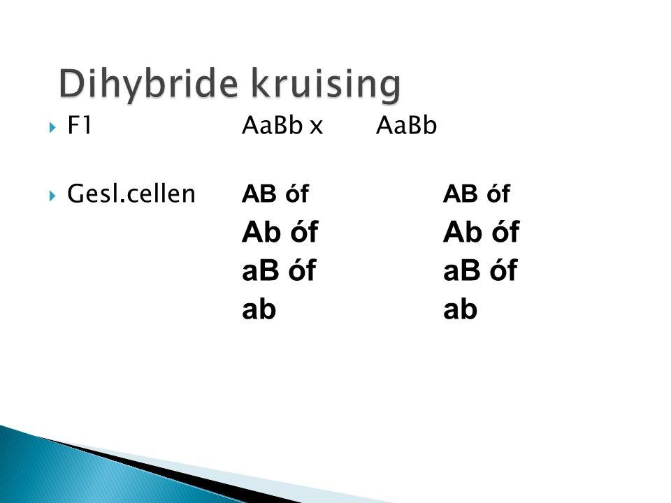  Stap 7 : Welke mogelijke combinaties ontstaan er bij de versmelting van eicel en zaadcel .