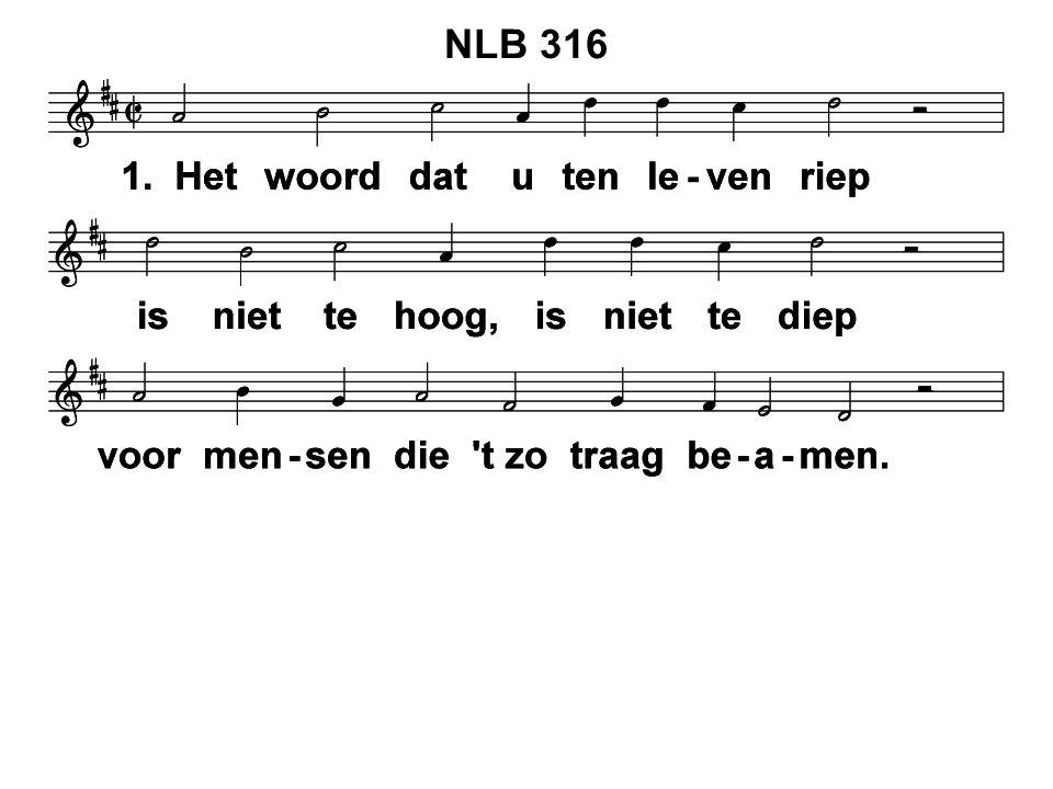 NLB 316