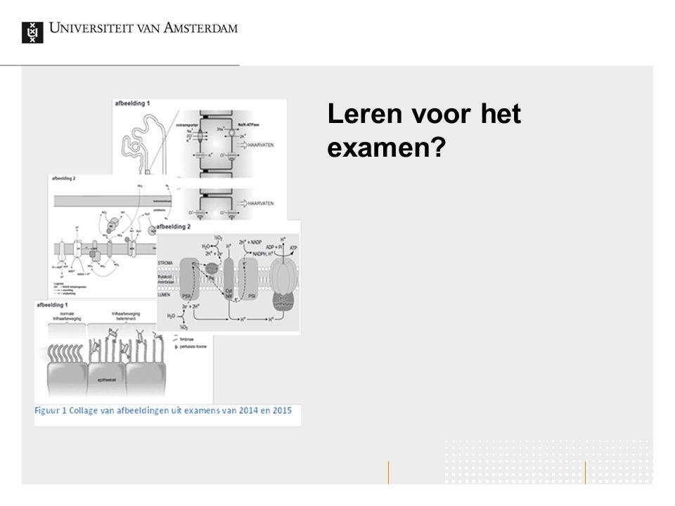Leren voor het examen?