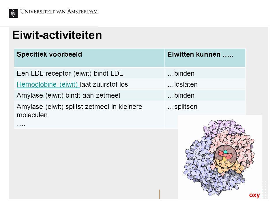 Eiwit-activiteiten Specifiek voorbeeldEiwitten kunnen ….. Een LDL-receptor (eiwit) bindt LDL…binden Hemoglobine (eiwit) Hemoglobine (eiwit) laat zuurs