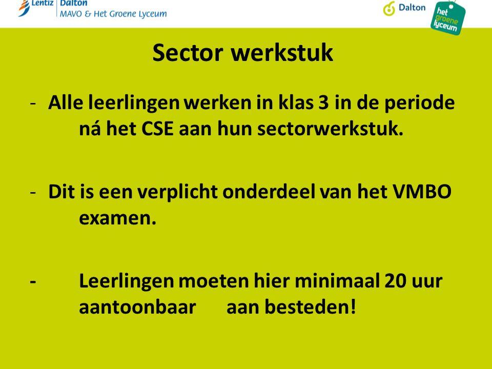 Sector werkstuk -Alle leerlingen werken in klas 3 in de periode ná het CSE aan hun sectorwerkstuk.