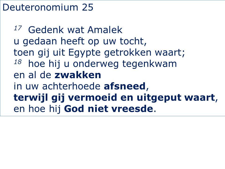 Deuteronomium 25 17 Gedenk wat Amalek u gedaan heeft op uw tocht, toen gij uit Egypte getrokken waart; 18 hoe hij u onderweg tegenkwam en al de zwakken in uw achterhoede afsneed, terwijl gij vermoeid en uitgeput waart, en hoe hij God niet vreesde.