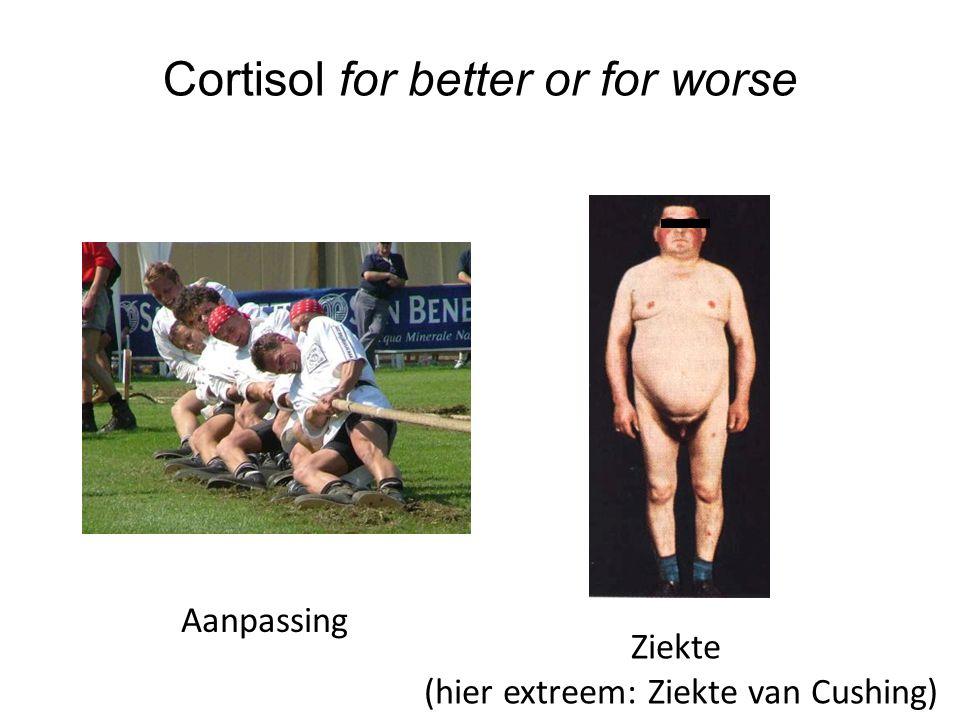 Cortisol for better or for worse Aanpassing Ziekte (hier extreem: Ziekte van Cushing)
