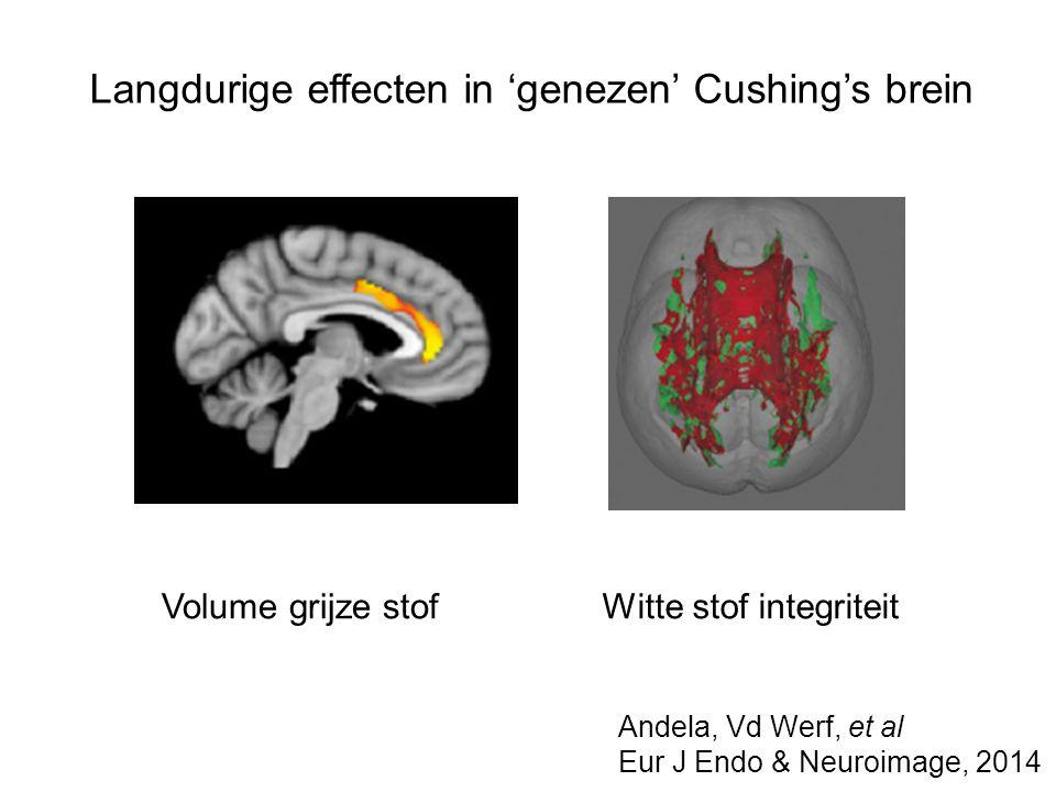 Langdurige effecten in 'genezen' Cushing's brein Volume grijze stofWitte stof integriteit Andela, Vd Werf, et al Eur J Endo & Neuroimage, 2014