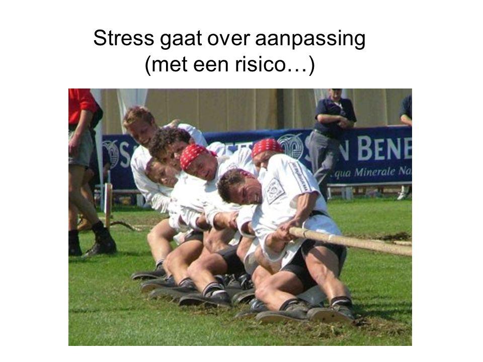 Leerstrategie onder invloed van stress M.Oitzl L.Schwabe H.