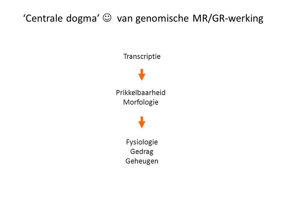 'Centrale dogma' van genomische MR/GR-werking Transcriptie Prikkelbaarheid Morfologie Fysiologie Gedrag Geheugen