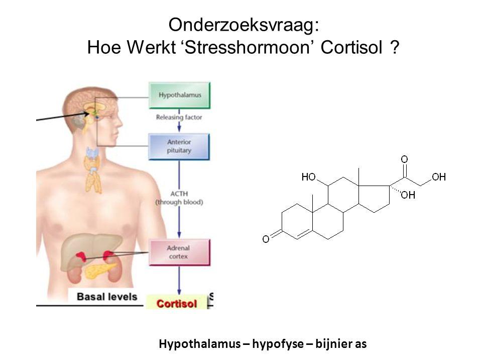 Hoe werken de receptoren? De Kloet et al, Nat Rev Neurosc 2005