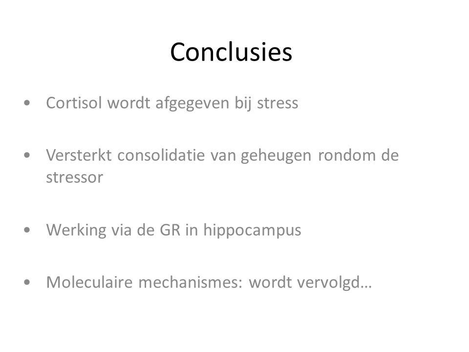 Conclusies Cortisol wordt afgegeven bij stress Versterkt consolidatie van geheugen rondom de stressor Werking via de GR in hippocampus Moleculaire mec