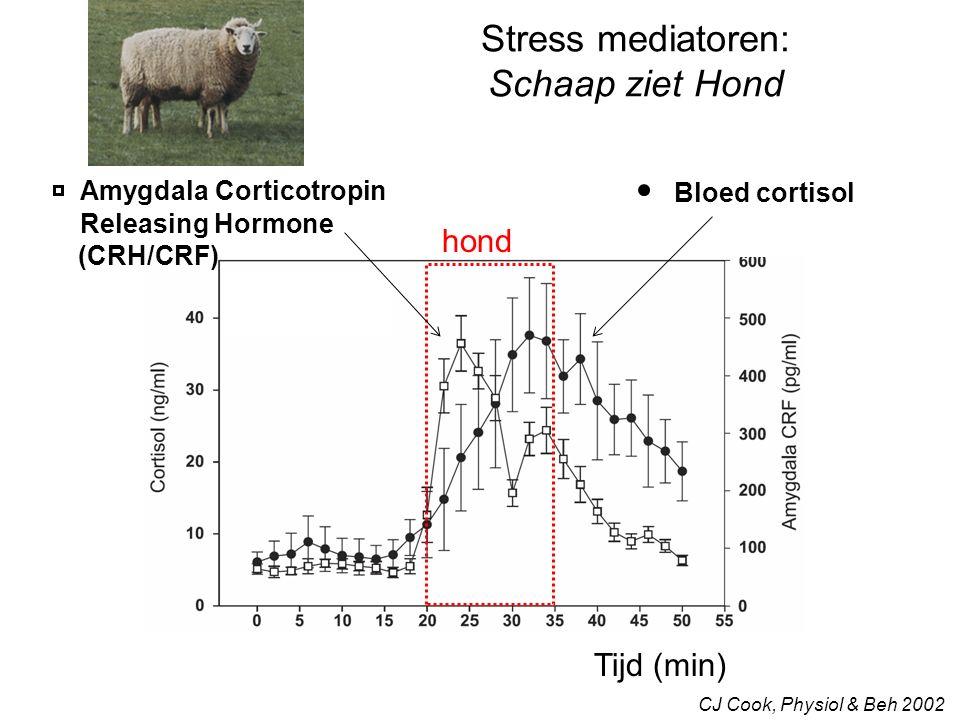Voor de mens: spreker ziet publiek Trier Social Stress Test Sympathische activatie Hartslag (bpm)
