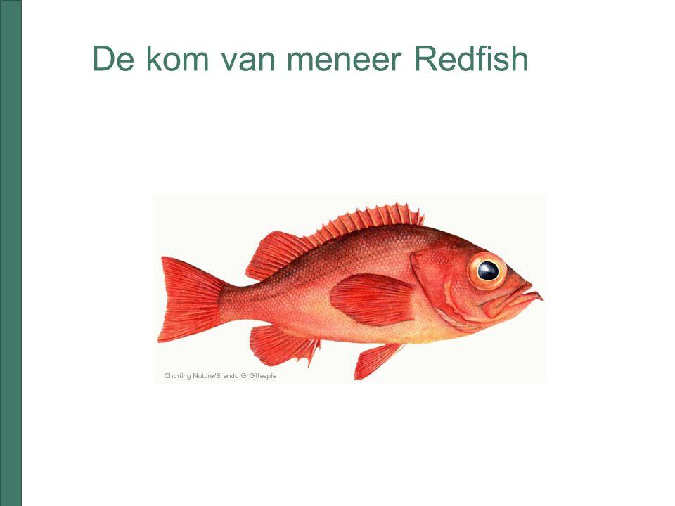 De kom van meneer Redfish