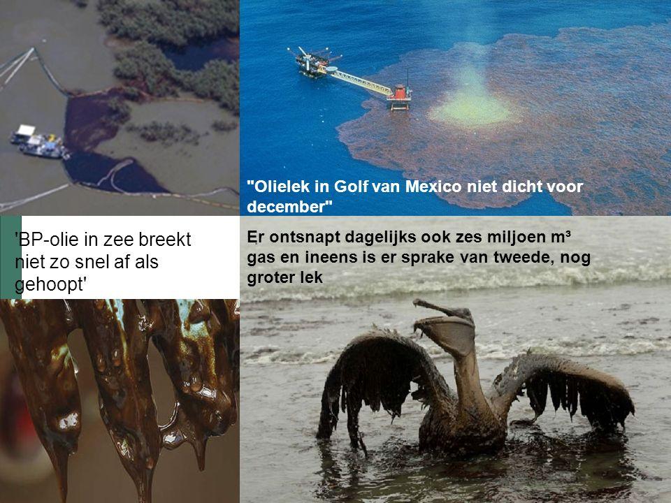 Omgaan met emoties Olielek in Golf van Mexico niet dicht voor december Er ontsnapt dagelijks ook zes miljoen m³ gas en ineens is er sprake van tweede, nog groter lek BP-olie in zee breekt niet zo snel af als gehoopt