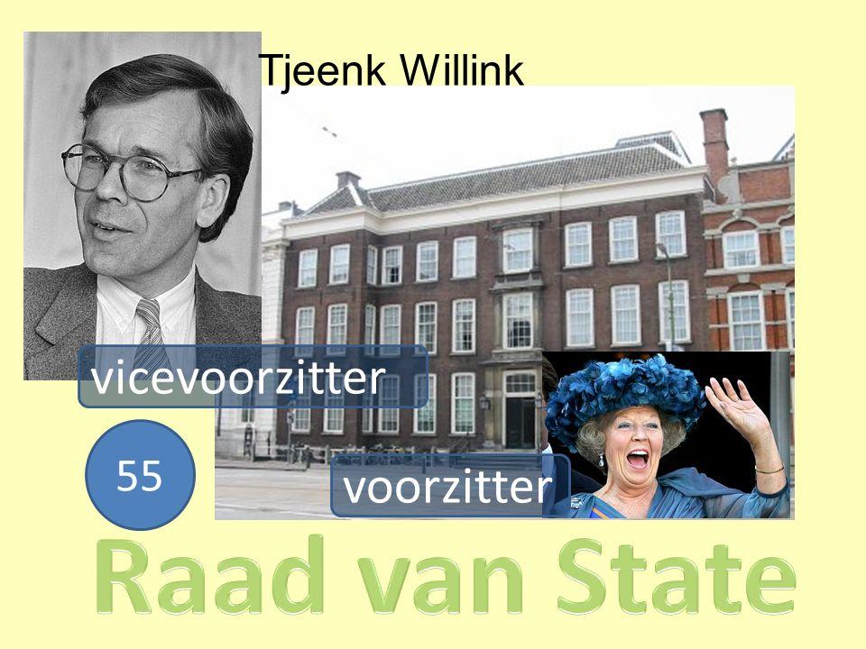 vicevoorzitter voorzitter Tjeenk Willink 55