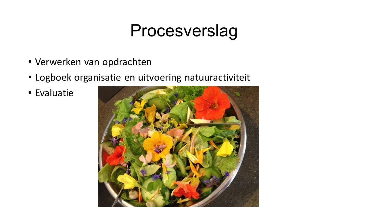 Procesverslag Verwerken van opdrachten Logboek organisatie en uitvoering natuuractiviteit Evaluatie