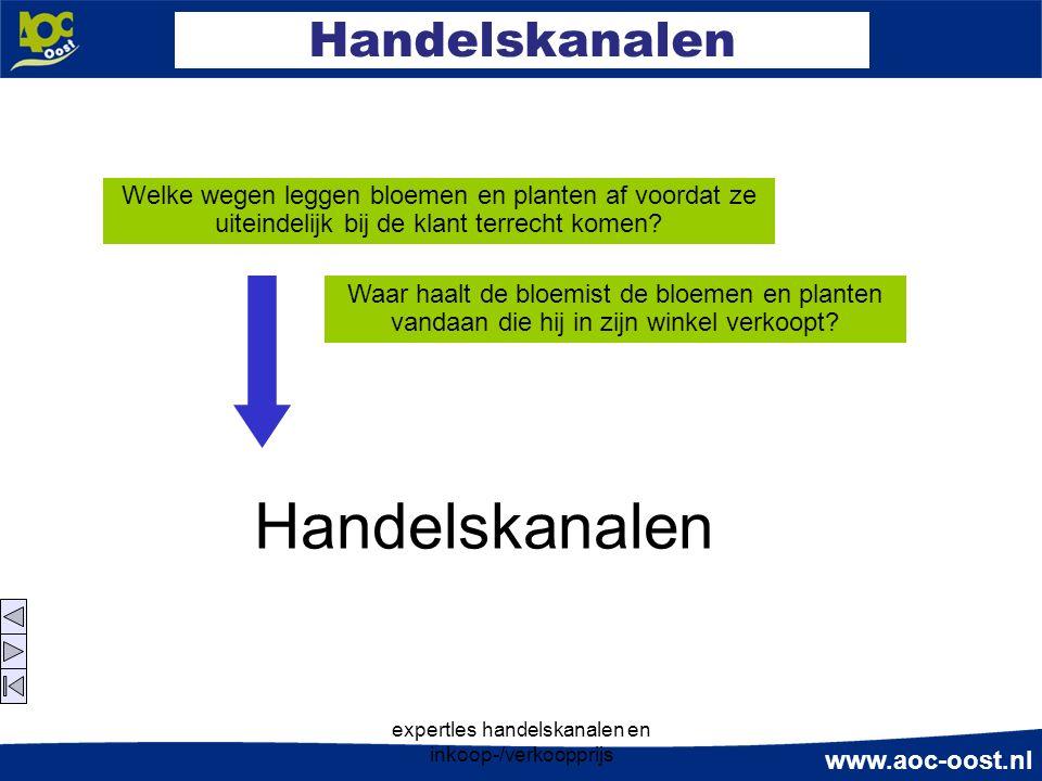 www.aoc-oost.nl expertles handelskanalen en inkoop-/verkoopprijs Handelskanalen Welke wegen leggen bloemen en planten af voordat ze uiteindelijk bij de klant terrecht komen.