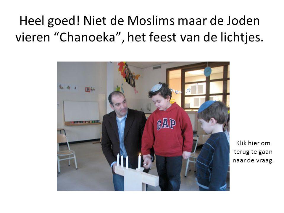 Heel goed. Niet de Moslims maar de Joden vieren Chanoeka , het feest van de lichtjes.