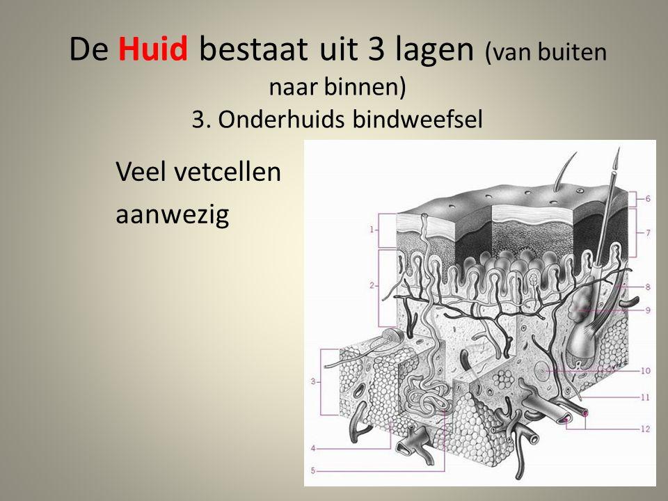 HUID: 1.