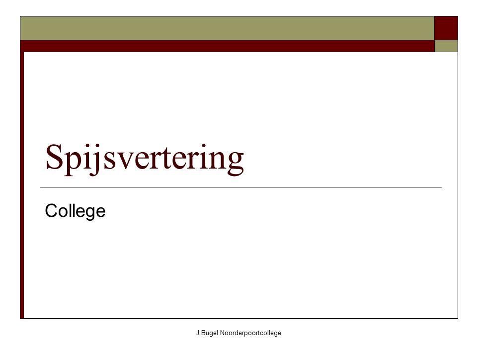 J Bügel Noorderpoortcollege Spijsvertering College