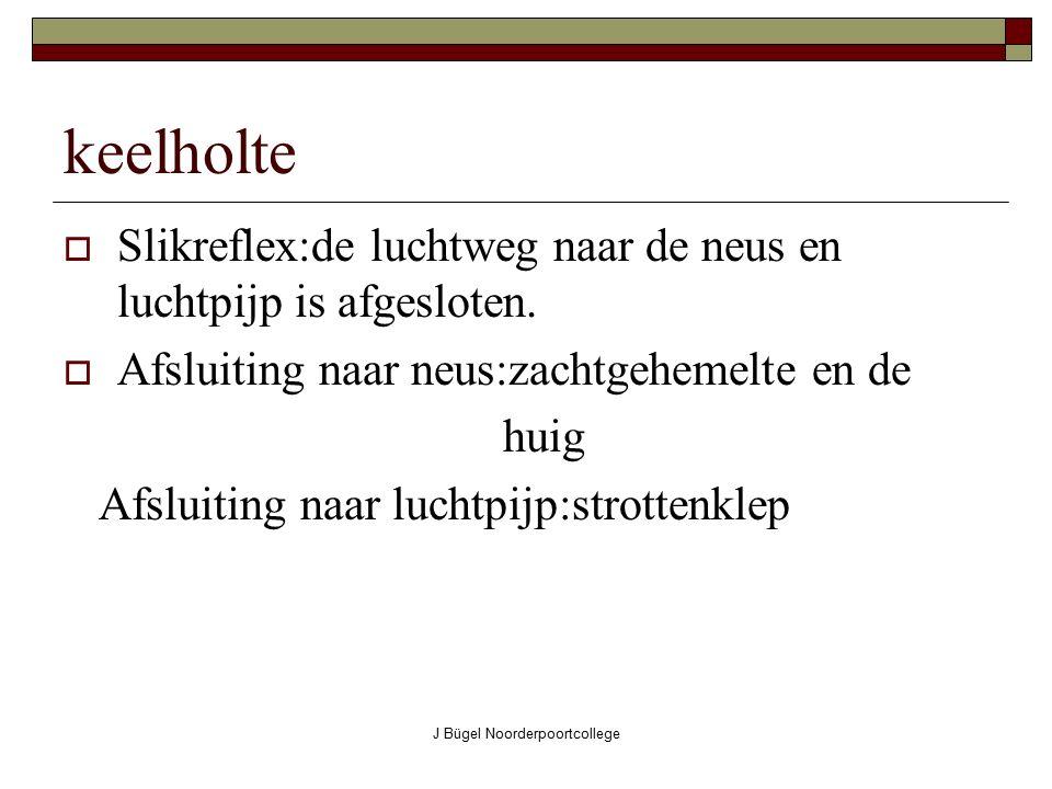 J Bügel Noorderpoortcollege keelholte  Slikreflex:de luchtweg naar de neus en luchtpijp is afgesloten.  Afsluiting naar neus:zachtgehemelte en de hu