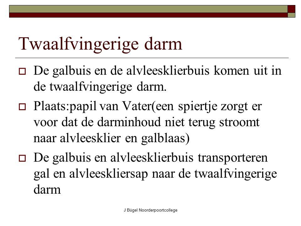 J Bügel Noorderpoortcollege Twaalfvingerige darm DDe galbuis en de alvleesklierbuis komen uit in de twaalfvingerige darm. PPlaats:papil van Vater(