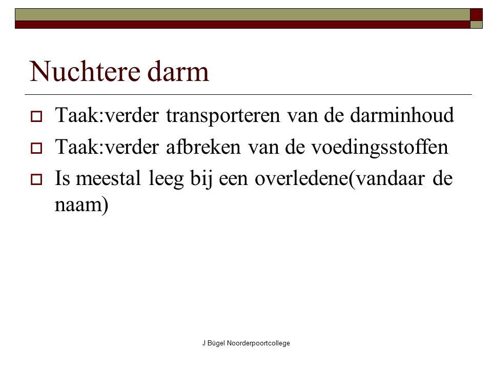 J Bügel Noorderpoortcollege Nuchtere darm  Taak:verder transporteren van de darminhoud  Taak:verder afbreken van de voedingsstoffen  Is meestal lee